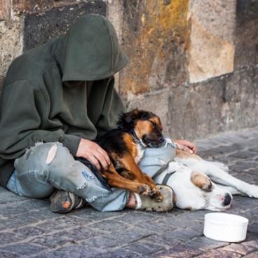 Die Obdachlosen